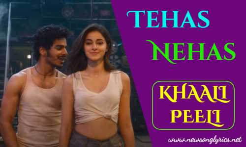 तेहस नहस TEHAS NEHAS Lyrics In Hindi KHAALI PEELI